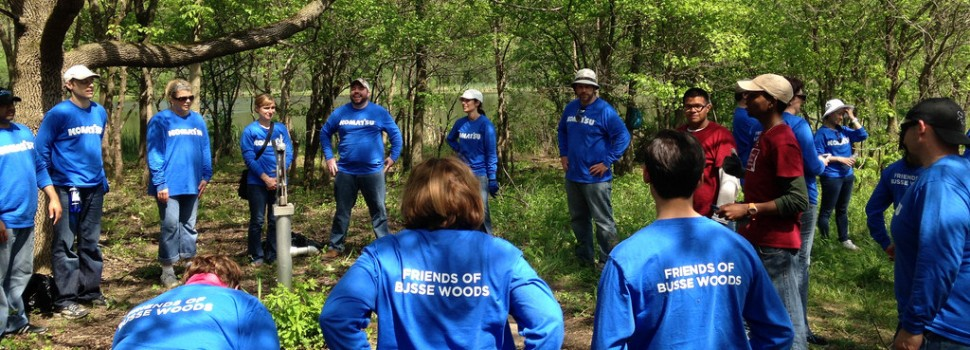 Our Forest Preserve Leadership Corps leads a corporate workday in Busse Woods for Komatsu.