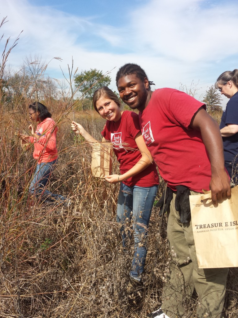 Forest Preserve Leadership Corps crew leader Daiva Gylys and Calumet Conservation Corps crew member Devon Brown hep lead a volunteer workday to collect native seeds at Kickapoo prairie.
