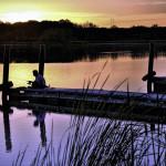 People in the Preserves: Fisherman, Busse Lake near Elk Grove Village, Wesley Iversen