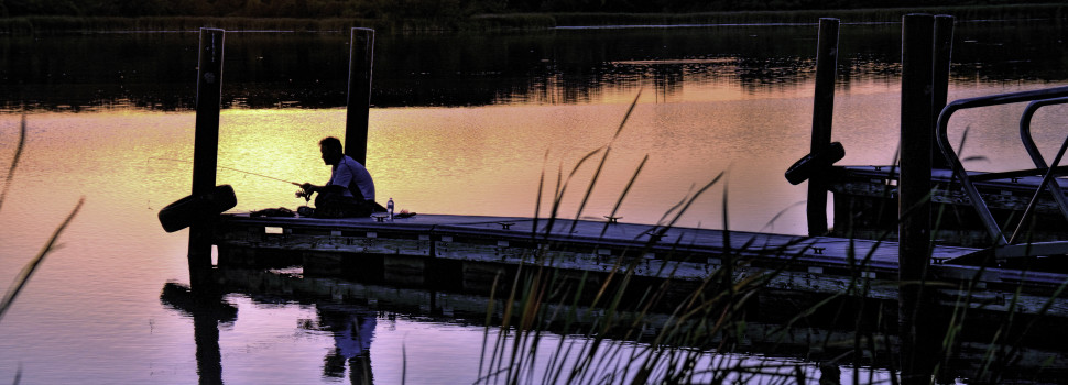 People in the Preserves: Fisherman, Busse Lake near Elk Grove Village, Wesley Iversen