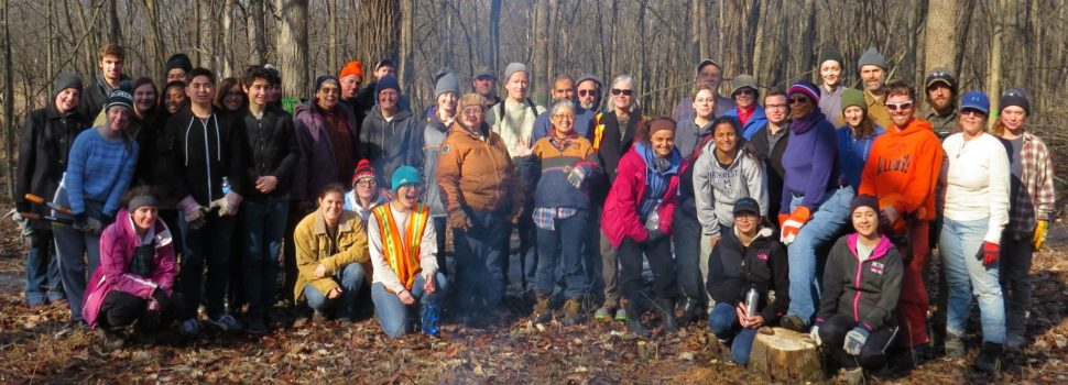 Community members join the Centennial Volunteers program at LaBagh Woods to remove invasive species (photo by Jeff Skrentny).