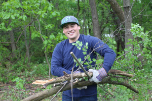 Apple employees participate in a corporate workday, helping restore the forest preserves.