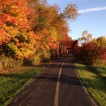 2015 Photo Contest Runner-up-Bridge, Busse Woods near Elk Grove Village, Dave Simmons