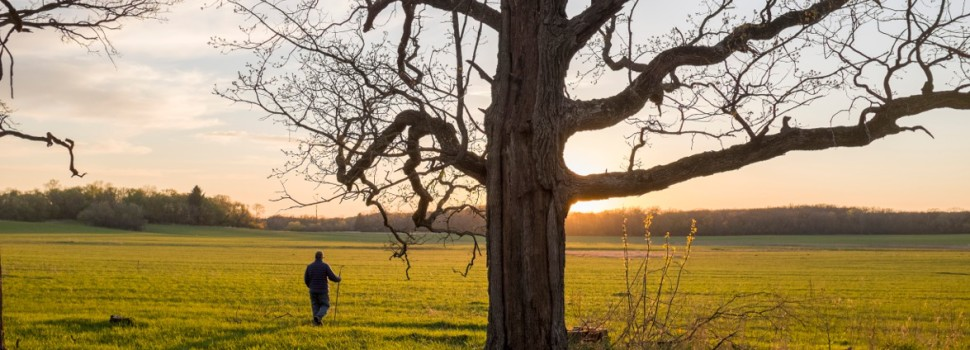"""2015 Photo Contest Winner """"People in the Preserves""""- Steward Jim Voris walking during an early spring day, Galloping Hill Prairie in the Spring Creek forest preserve near Barrington, Jim Root"""
